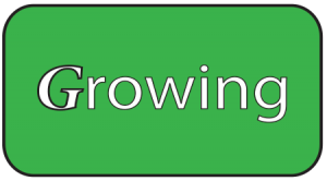 Growing-only